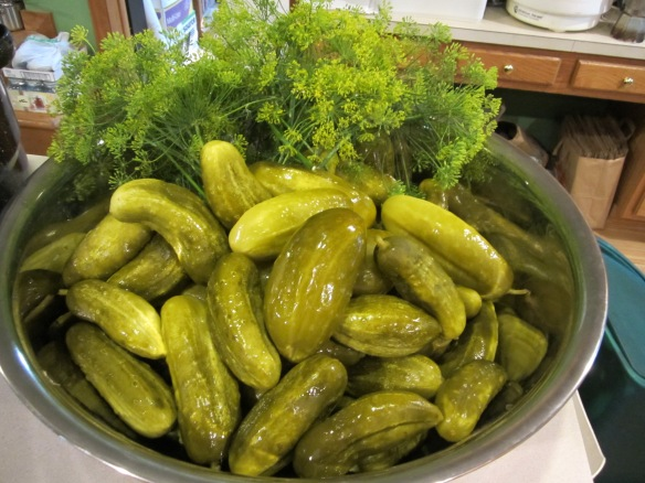 pickles and dill
