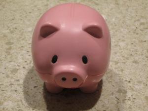 BTO pig