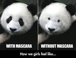 mascara pandas