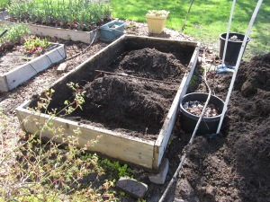 moving the raised bed